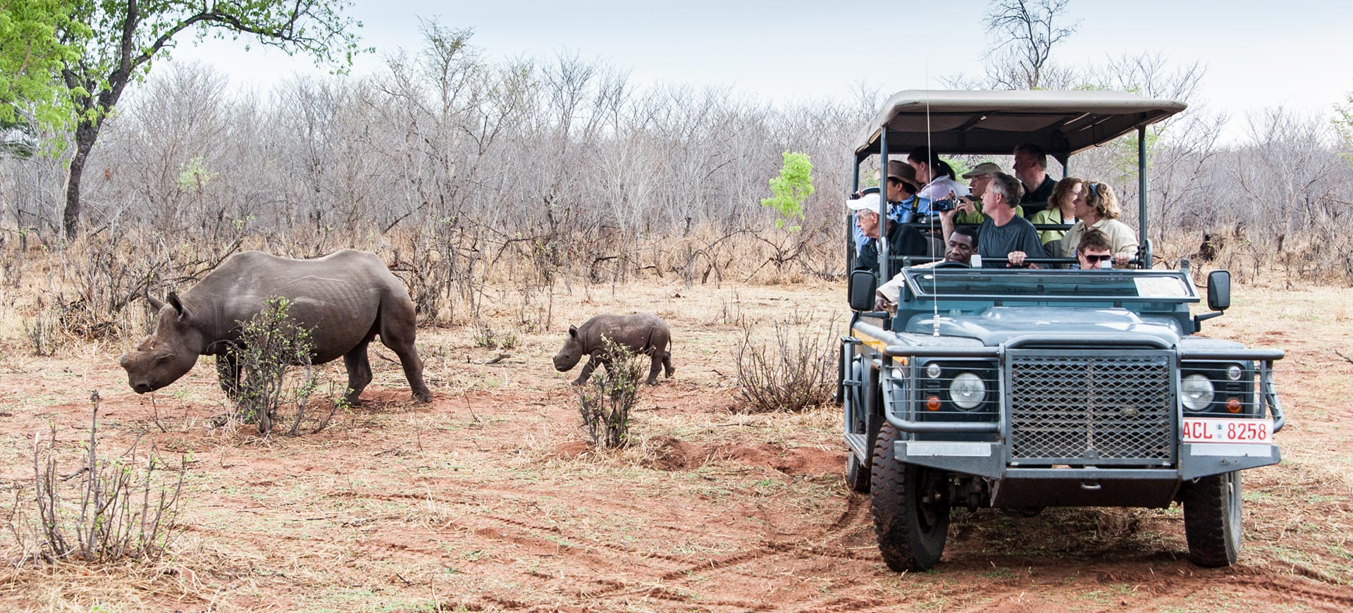 Game Drive At Victoria Falls Conference